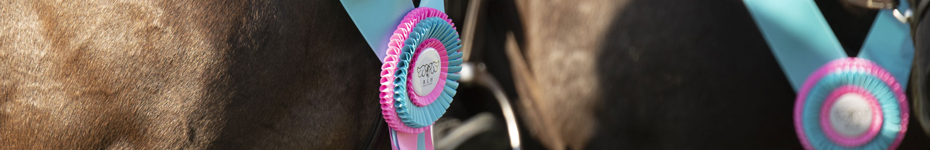 Services - RLH Equestrian