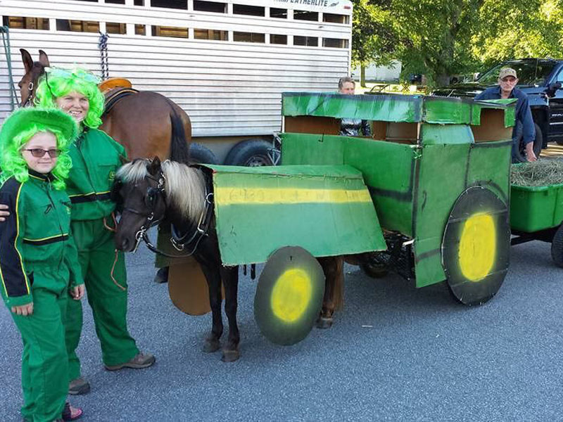 Our Horses - Skor